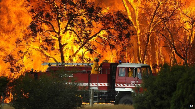 A fire engine against a backdrop of a wild bushfire