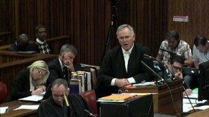 Mr Roux, questioning Michelle Burger