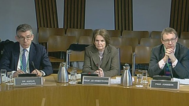 Witnesses at the committee