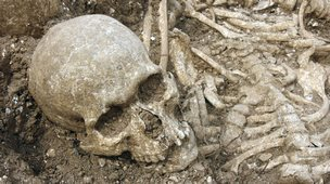 Skull found in Viking mass grave, Weymouth