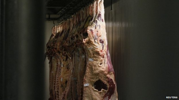 Hanging cattle carcasses