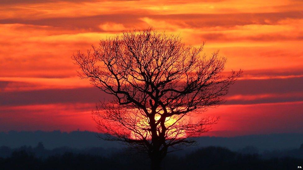 The sunset near Ashford in Kent