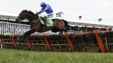 Hurricane Fly jumps hurdle