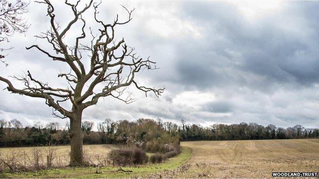 Langley Vale, Epsom, Surrey