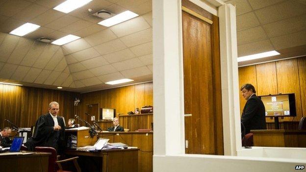 The scene in court during Oscar Pistorius' murder trial (13 March 2014)