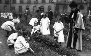 School children do their bit helping to grow food for the war effort