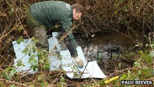 Environment Agency cleaning up spilled oil