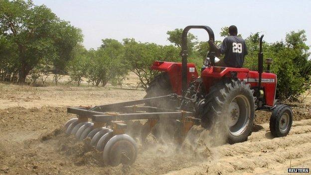 Farm in Kaduna state, Nigeria, 4 July 2013