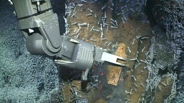 Robot arm breaks rock from sea bed