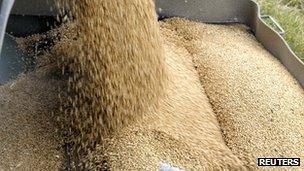 Grain auger