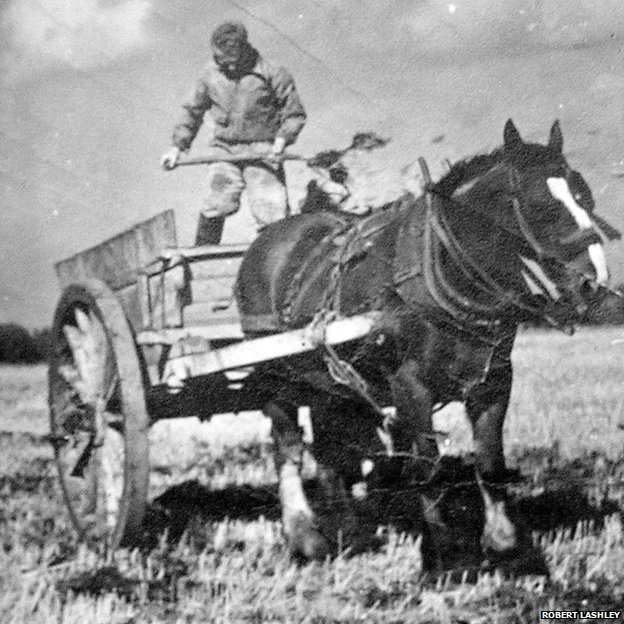 Black and white photo of a man standing on a horse and cart