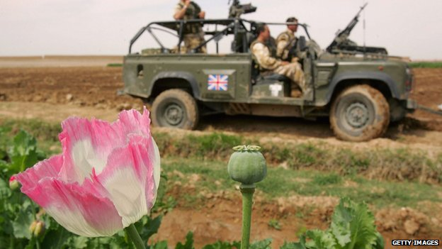 British troops in Helmand drive past a poppy field