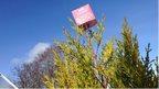 Mic cube on tree