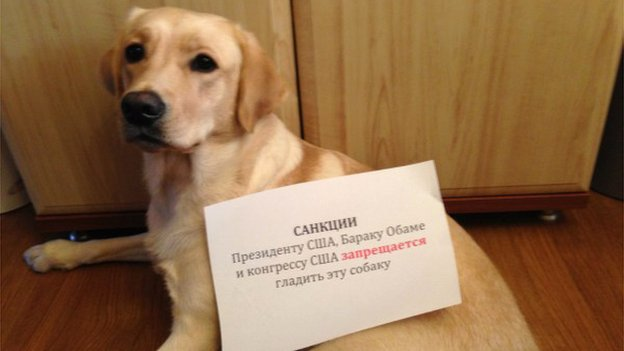 "A dog with a sign which says: ""Sanctions - US Congress and US President Barack Obama are prohibited from stroking this dog"""