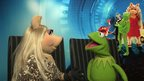 Kermit and Miss Piggy face each other