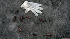 A latex glove from an investigator lies on the floor near empty bullet casings in Kabul