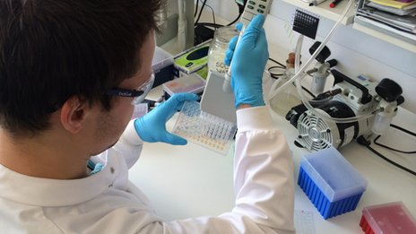 technician testing samples