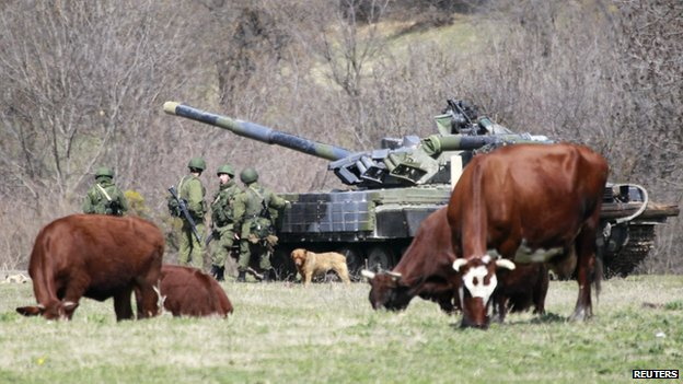 Cows graze near a tank and servicemen, believed to be Russian, outside a military base in Perevalnoye, near the Crimean city of Simferopol, on 27 March 2014.