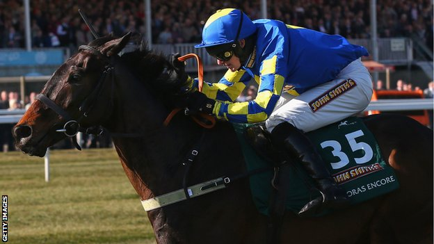 Auroras Encore winner of the 2013 Grand National
