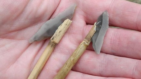 Suggested hafting positions of Cheddar points on wooden spears