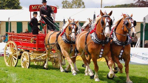 Heavy horses at Royal Norfolk Show 2011