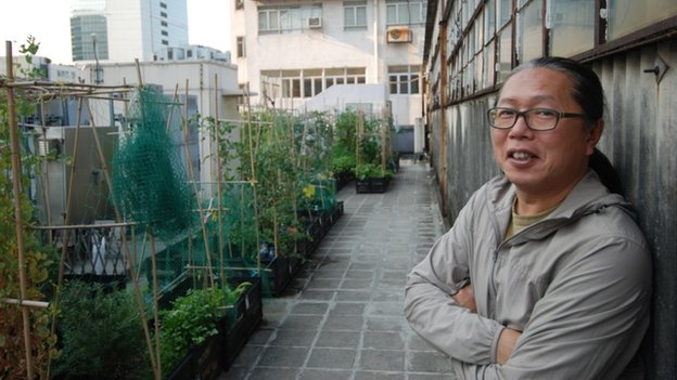 Osbert Lam, founder of City Farm