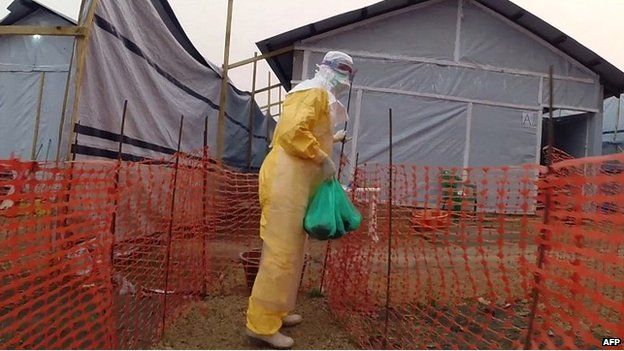 A health worker in protective clothing at one of the sites of the outbreak in Guinea - 31 March 2014