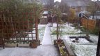 A garden with flowers, grass and a shed is covered in white hailstones.