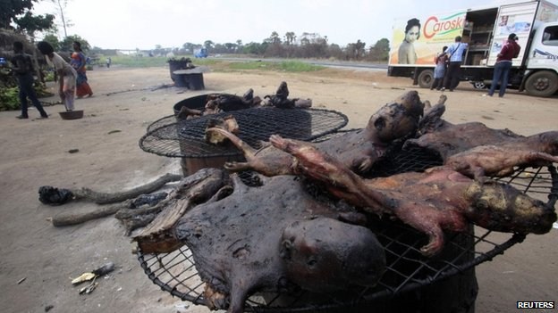 People walk near dried bushmeat near a road of the Yamoussoukro highway in Ivory Coast - 29 March 2014
