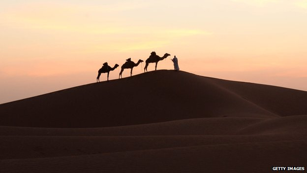 Camels and their keeper in the Sahara (file photo)