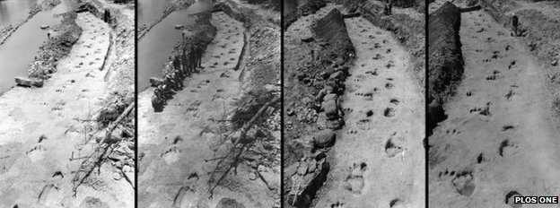 Dinosaur trackway - photos taken 70 years ago