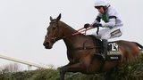 Grand National winner Pineau De Re