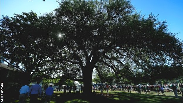 Augusta's famous oak tree outside the clubhouse
