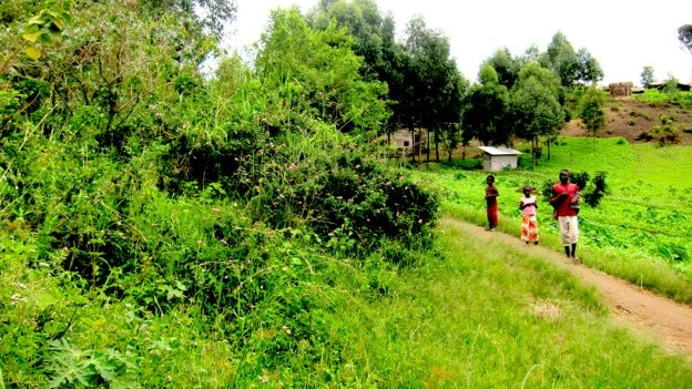 A mass grave in Rutshuru