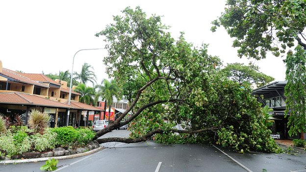 A fallen tree is seen laying across a road caused by cyclonic winds on 12 April 2014 in Port Douglas, Australia