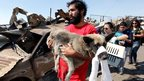 A resident carries an injured dog in Valparaiso, April 13, 2014