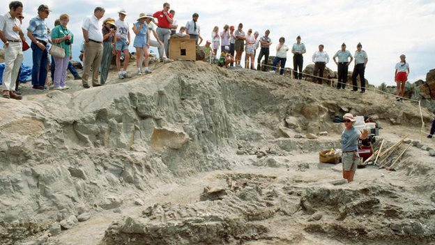 Excavation of Wankel T-Rex at Fort Peck, Montana