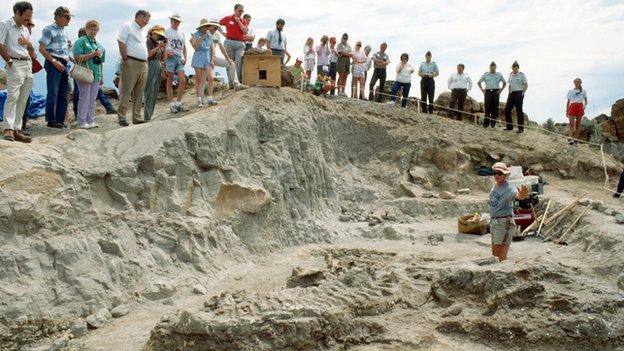 Excavation of Wankel T-Rex at Fort Peck, Montana