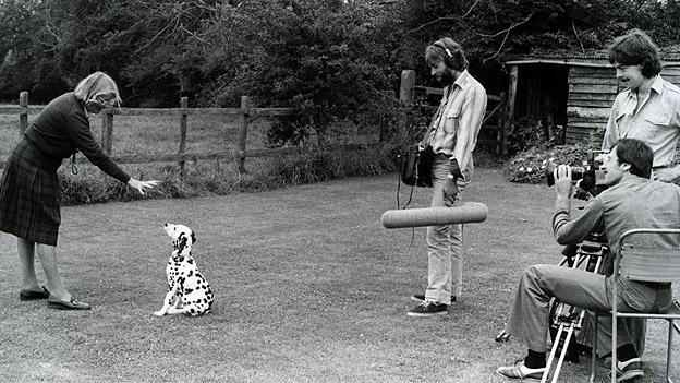 Dog Training The Woodhouse Way