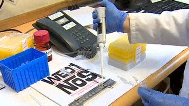 Wedinos drug testing