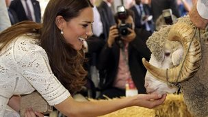 Duchess of Cambridge pats a ram