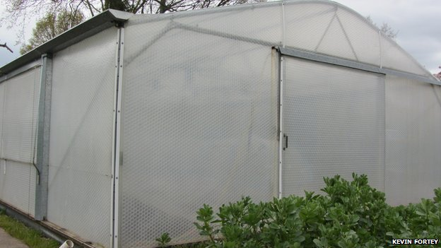 Kevin Fortey has set up the alarm system in his insulated greenhouse