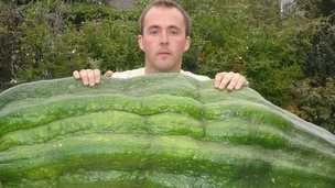 Kevin Fortey and his brother Gareth grew a 12st 3lbs (77.5kg) marrow in 2010