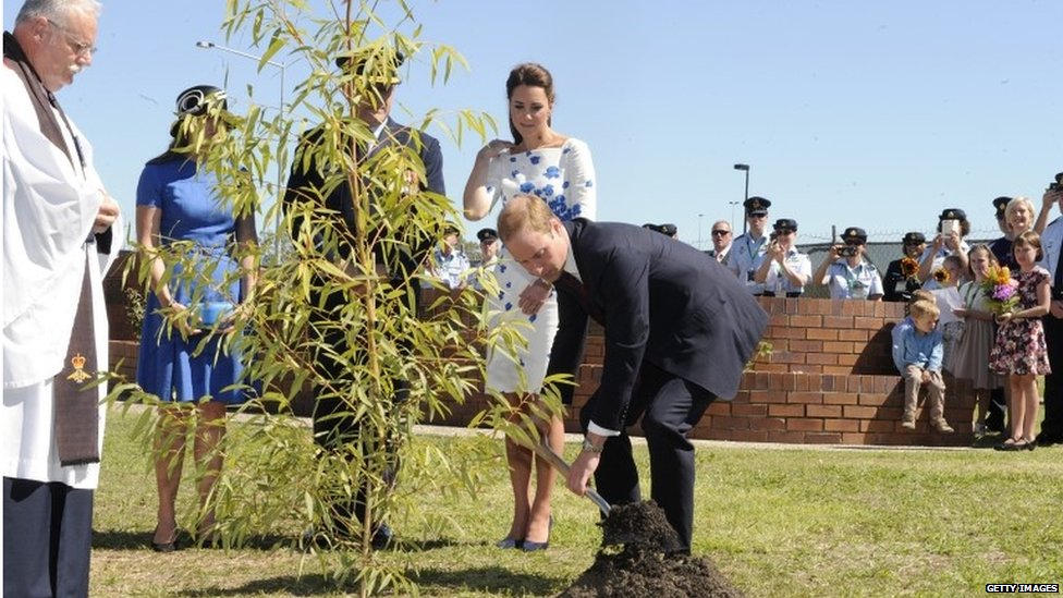The Duke and Duchess of Cambridge plant a tree