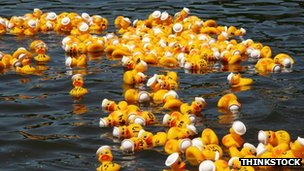 Rubber ducks on a river
