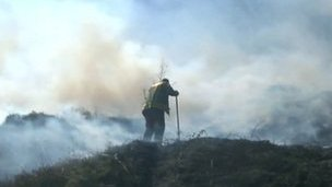 A fireman fighting a grass fire