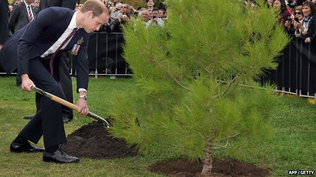 Prince William Anzac Day commemorations
