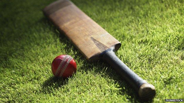 Vintage cricket bat and ball