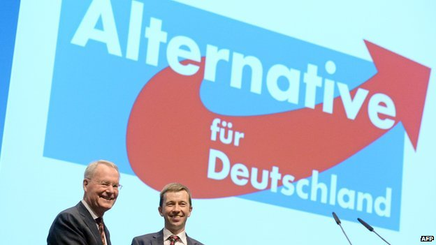 AfD rally and party members - file pic