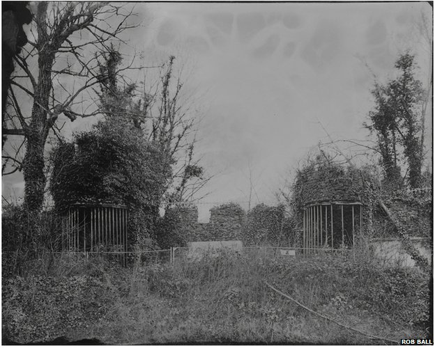 Remains of menagerie enclosures and cages at Dreamland